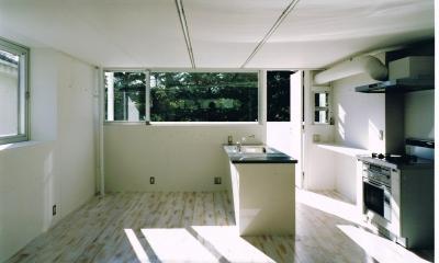 仲條邸 アトリエを二つ持つスキップフロアの家 (キッチン)