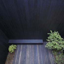 給田の家 (給田の家 中庭)