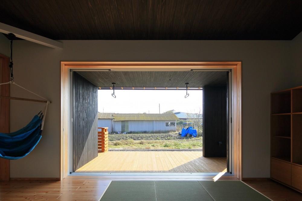 平塚町の家~20坪の豊かな暮らし~ (リビングより庭を見る)