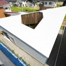 個性的な屋根 (カタチのヒミツ)