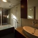 赤坂の家Ⅱ 洗面