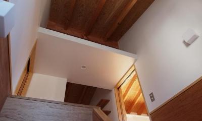 大山の家(ペットと暮らす家) (階段室)