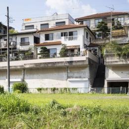 我孫子の家 (雛壇造成された敷地から自然豊かな手賀沼を一望する住宅)