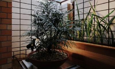 アーバンライフを楽しむマンションリノベーション (植物を楽しめるベランダ)