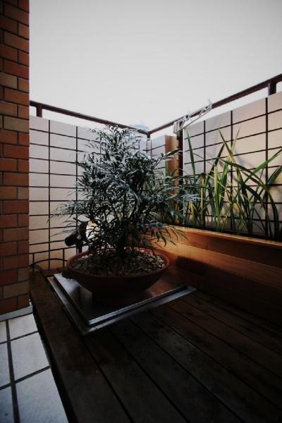 植物を楽しめるベランダ (アーバンライフを楽しむマンションリノベーション)