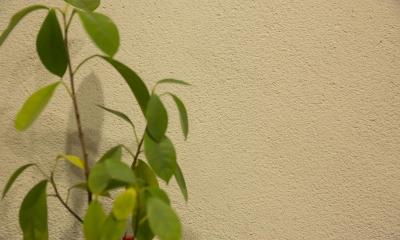 働く30代ご夫婦の身体と心を癒す手作りのようなぬくもり感 (塗り壁)