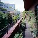 赤坂の家の写真 赤坂の家 バルコニー