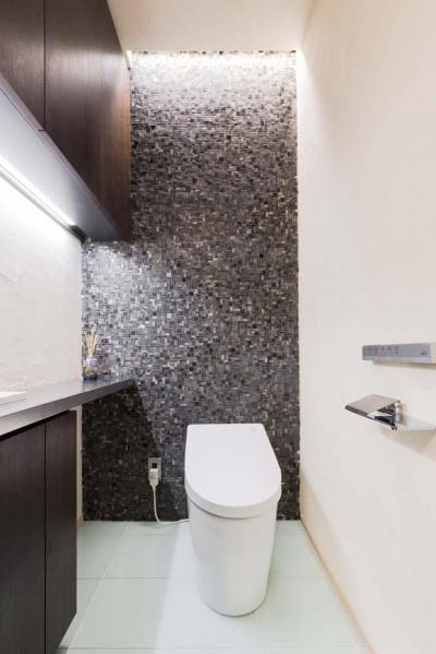 間接照明によりモダンで洗練された雰囲気のトイレ (マンション専有内空間を最大限利用。収納プラス 10 ㎡を稼ぐプラン提案!!)