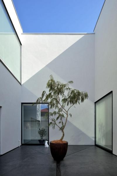 ストイックな中庭 (浜田山の家-ギャラリースタイルの家、ミニマリズムの調べ-)
