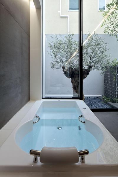オリーブの見える浴室 (浜田山の家-ギャラリースタイルの家、ミニマリズムの調べ-)