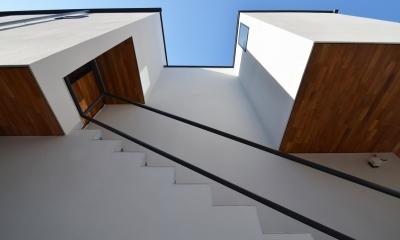 青葉台KM邸-都市公園の緑を借景とするスキップフロアの二世帯住宅- (玄関前の木の軒天)