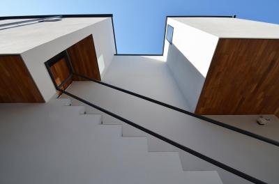 玄関前の木の軒天 (青葉台KM邸-都市公園の緑を借景とするスキップフロアの二世帯住宅-)