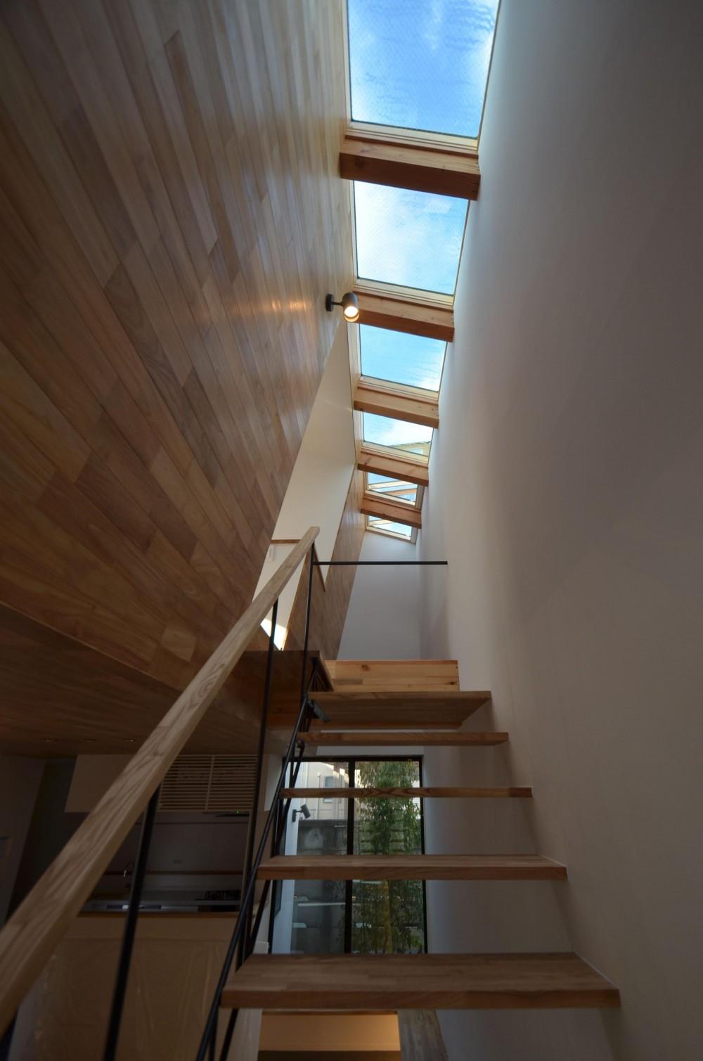 本天沼S邸-領域を明確にし、内外の連続性をつくりだす石壁- (吹抜を上がる階段と天窓)
