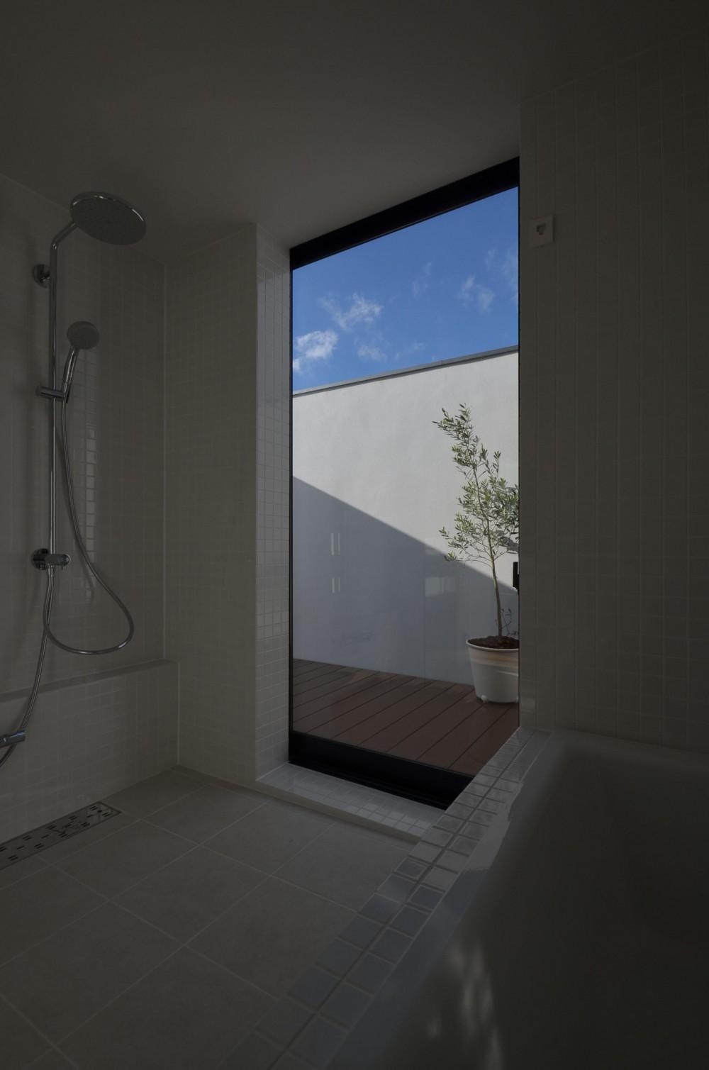本天沼S邸-領域を明確にし、内外の連続性をつくりだす石壁- (バスルームから見るバスコート)