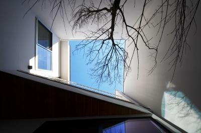 中庭を下から見上げる (保谷O邸-「鳥かご」のあるシンプルモダンなコートハウス-)