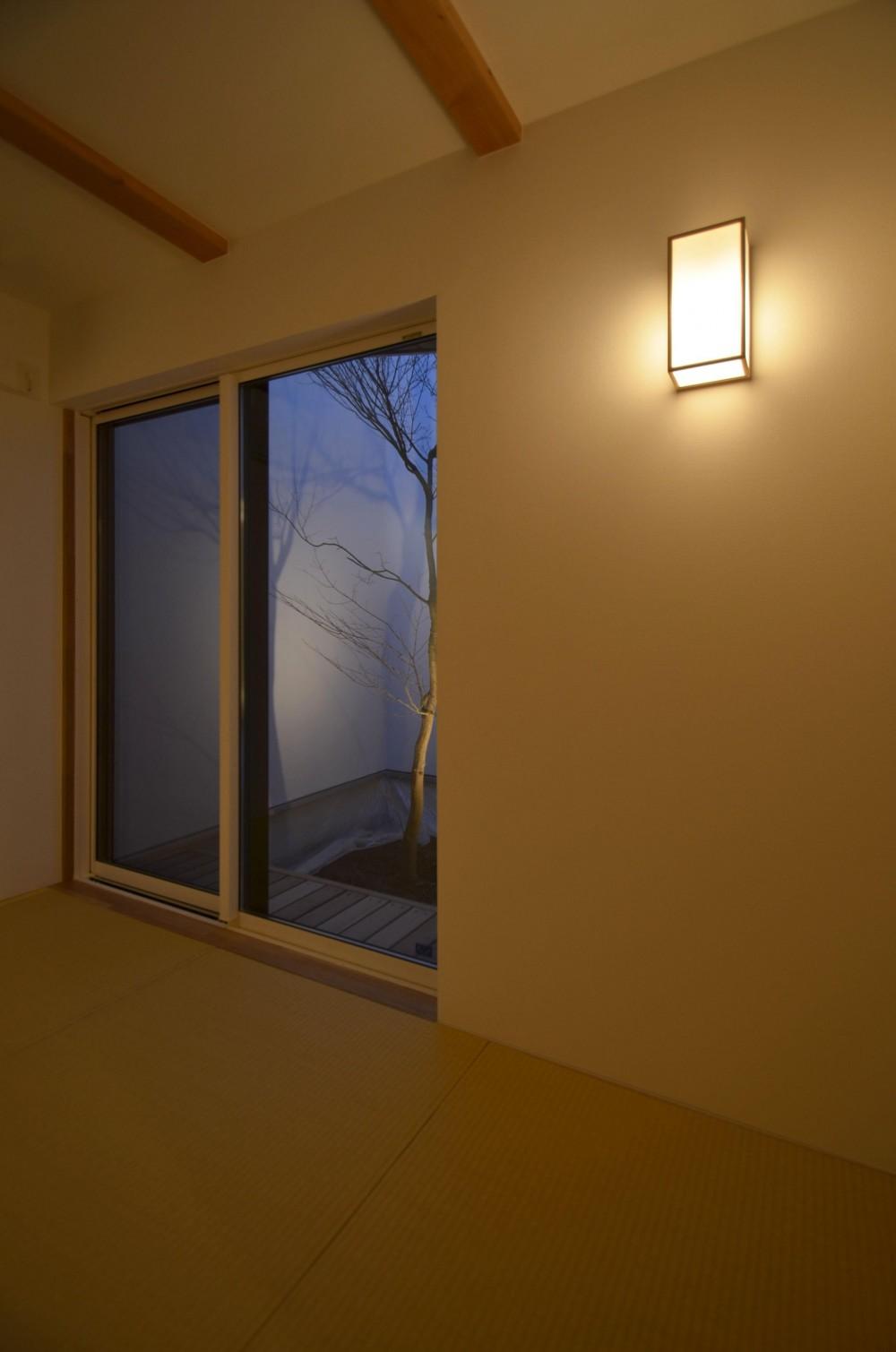 保谷O邸-「鳥かご」のあるシンプルモダンなコートハウス- (3畳の和室から中庭を見る)