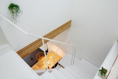 10mの家 (3階から階段越しにダイニングをみる)