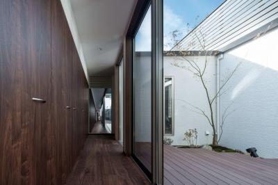 光と風を取り込む中庭 (光と風を取り込むため中庭と屋根上のウッドデッキ 「呉の家Ⅱ」)