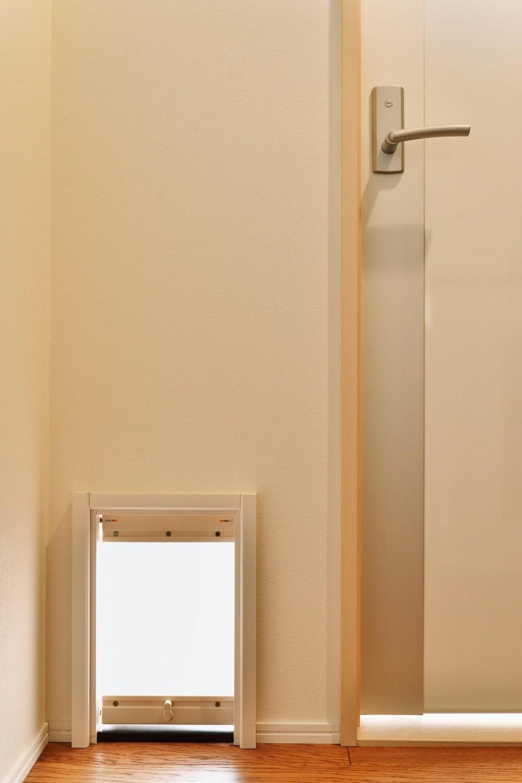 川崎市W様邸 ~猫と空色~ (洋室ドア)
