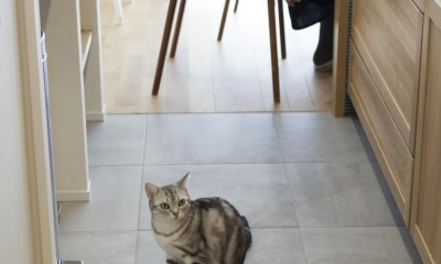 くつろぎのスペースを大きく確保。子供も猫ものびのび過ごせる温もりの家。 (キッチン)