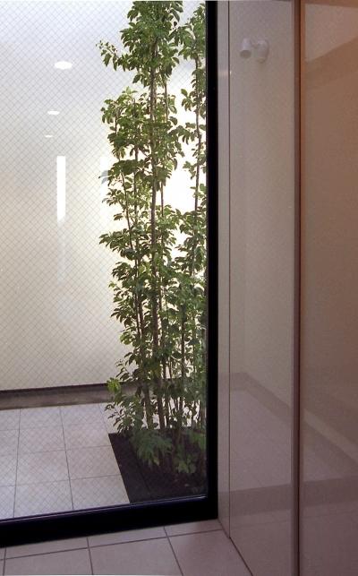 オープンテラスの家・OPEN TERRACE HOUSE (玄関・ライトコート)