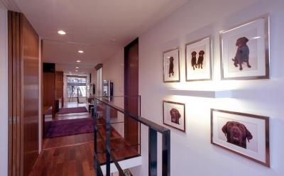 オープンテラスの家・OPEN TERRACE HOUSE (階段ホール)