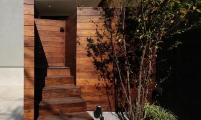 ウッドテラスの家・WOOD TERRACE HOUSE 東京都杉並区 (アプローチ2)