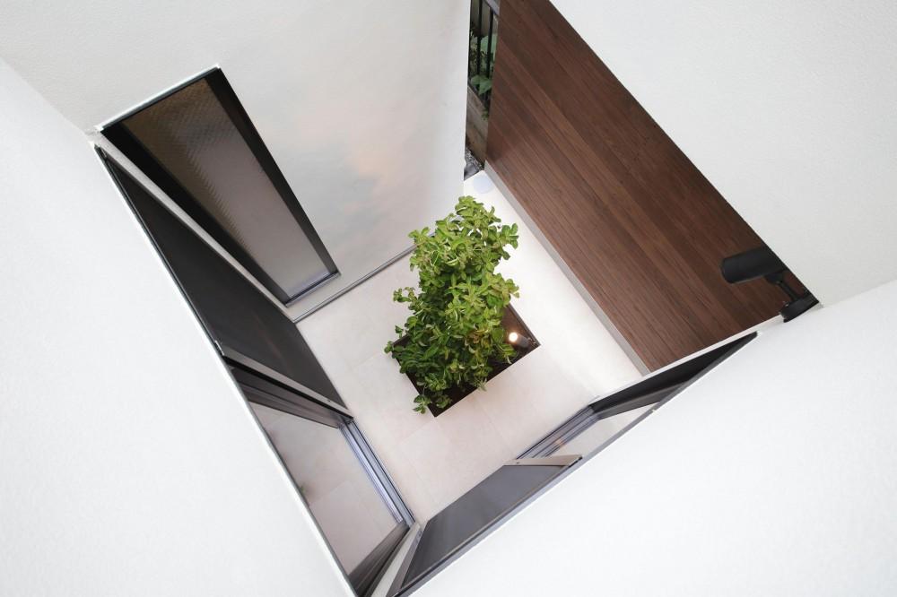 ウッドテラスの家・WOOD TERRACE HOUSE 東京都杉並区 (坪庭3)