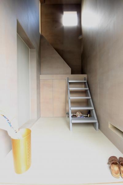 三条の家 (フレキシブルボード仕上の玄関)