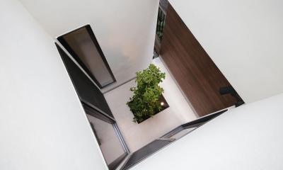 ウッドテラスの家・WOOD TERRACE HOUSE 東京都杉並区 (坪庭4)