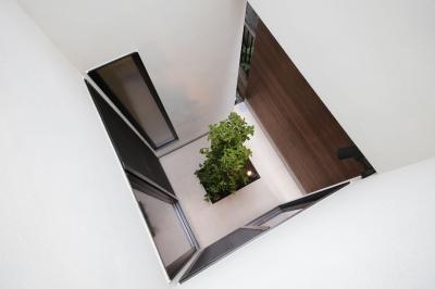 坪庭4 (ウッドテラスの家・WOOD TERRACE HOUSE 東京都杉並区)