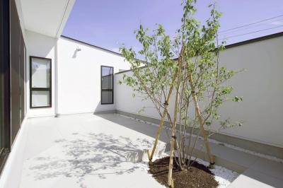 中庭 (中庭を囲む高気密高断熱住宅・T-HOUSE morioka)