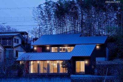 (東京都あきる野市)秋川の3段崖地の家/A棟/B棟 (A棟とB棟が1つの家に見える外観)