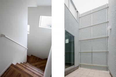 階段・中庭 中庭のテラスハウス 東京都足立区 (中庭のテラスハウス)