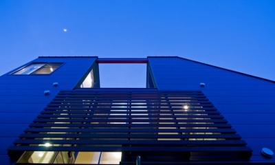 陽が降り注ぐライトコートのある家/東京都阿佐ヶ谷の家 (ライトコートにアマゾンチェリーのスクリーンを設けた外観)