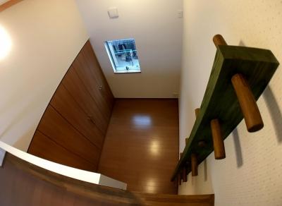『片流れの家 シンボルツリーハウス』 (ロフト)