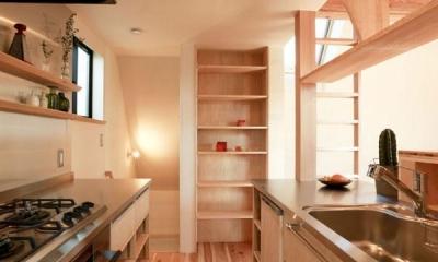 大森西の家 (キッチン)