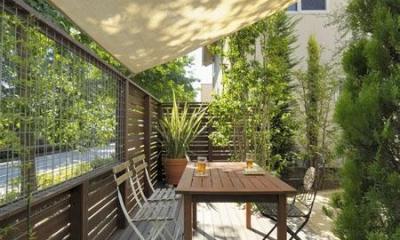楽しくスタイリッシュなドッグランのある庭