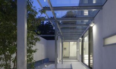 シンボルツリーのあるテラス|6COURT-HOUSE