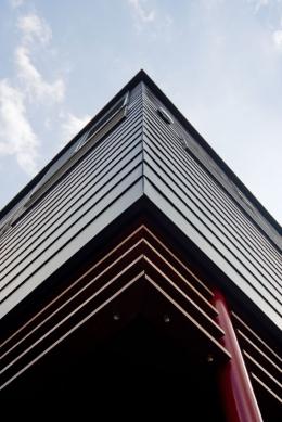 展望バルコニーのある家 (建物コーナー部分(ガルバリウム鋼板平葺き)見上げ)