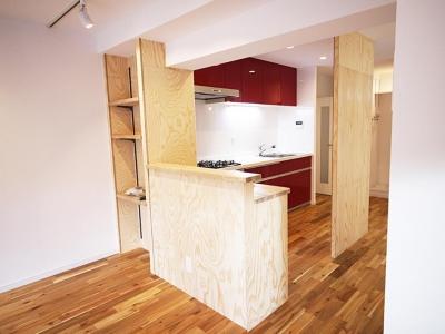エコハウスへリノベーション (キッチン)