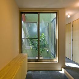 陽が降り注ぐライトコートのある家/東京都阿佐ヶ谷の家