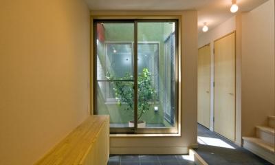 陽が降り注ぐライトコートのある家/東京都阿佐ヶ谷の家 (ライトコートに接する玄関の土間スペース)