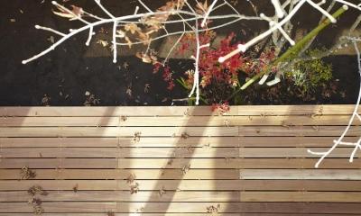 四つ葉 〜光溢れる木の家〜 (ウッドデッキ)