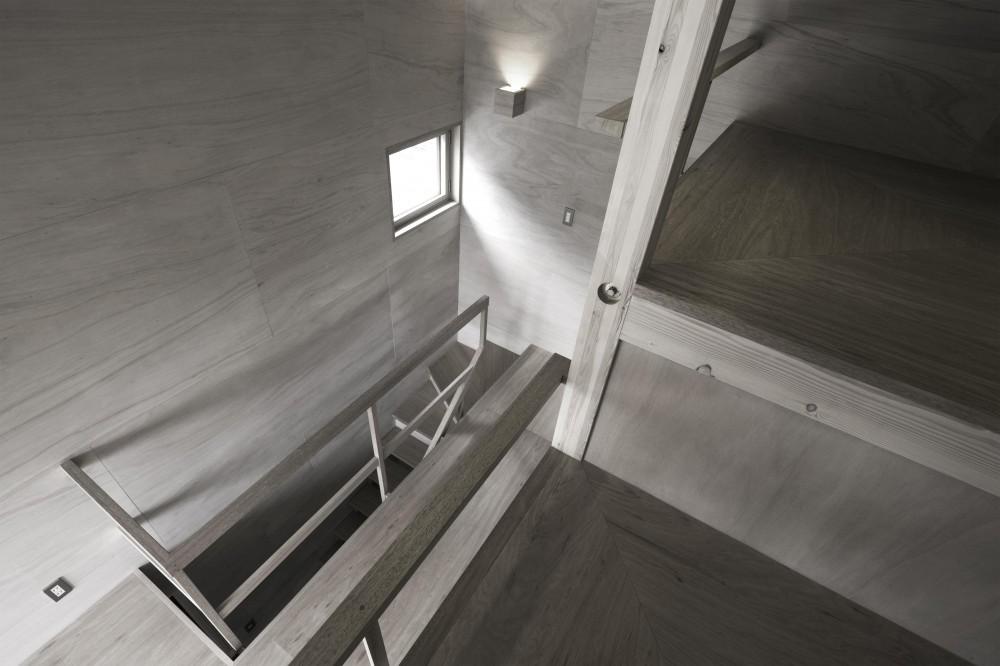 川越の住居 / House in Kawagoe (ホール)