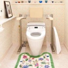 N邸 (肘掛手すり付きトイレ)