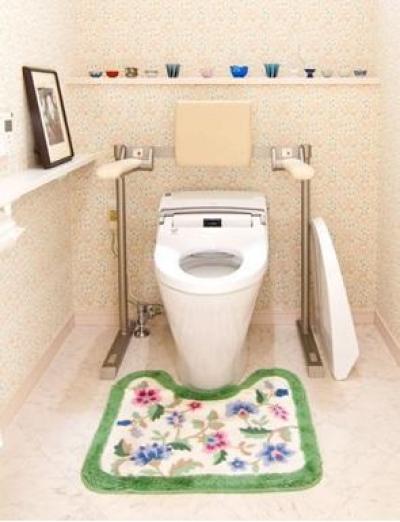 肘掛手すり付きトイレ (N邸)