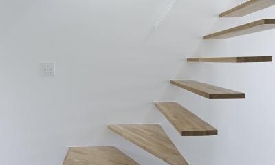 公園の家 (階段)