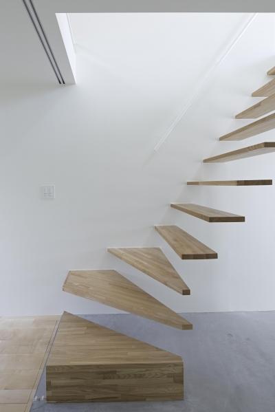 階段 (公園の家)