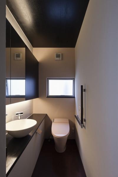 夜桜をイメージしたトイレ (対岳荘)
